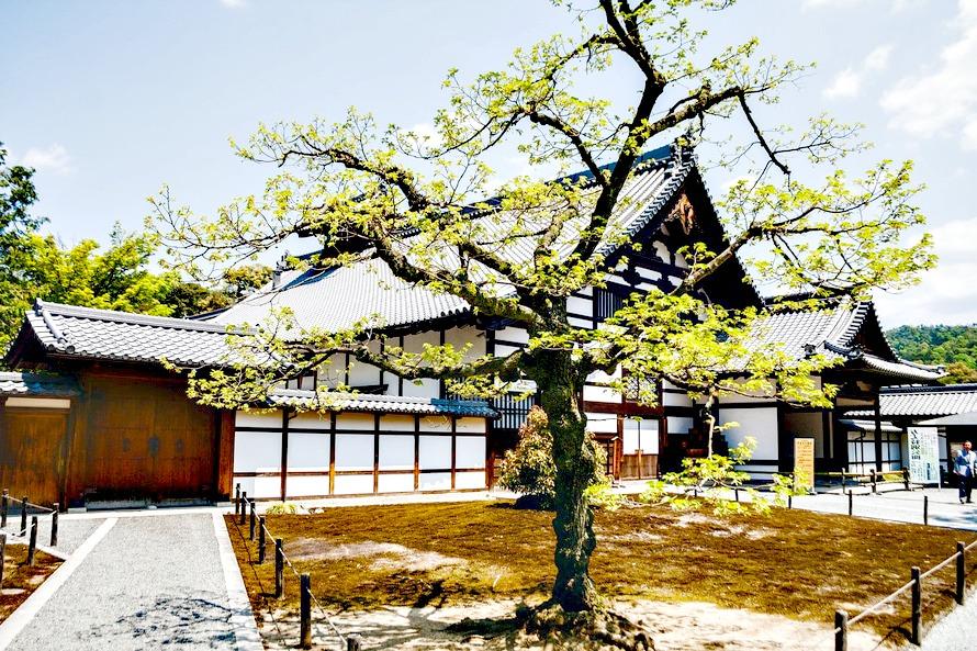 Nature et zen, laissez entrer le design japonais chez vous
